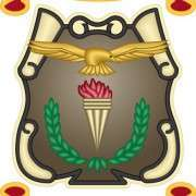 Mhs   Logo   Rgb